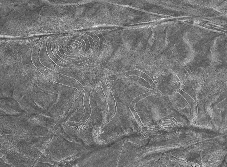 ナスカの地上絵の画像 p1_19